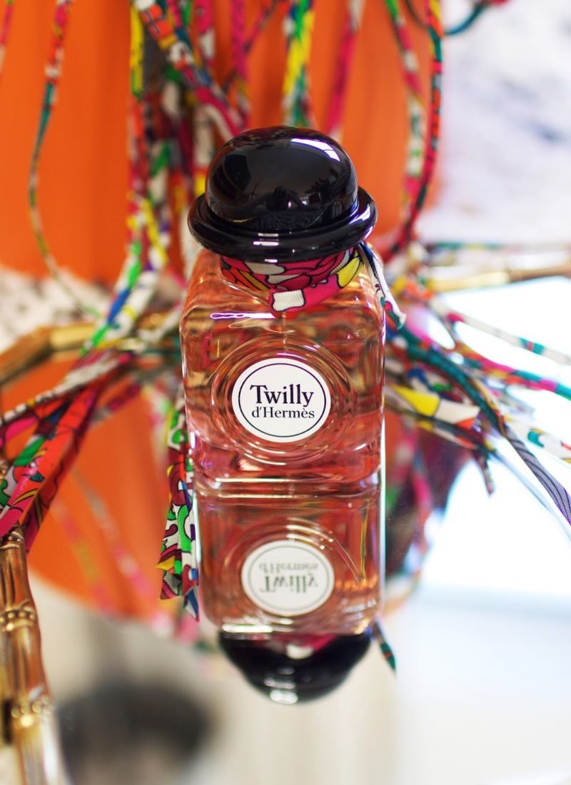 Peek Inside the Orange Box: Twilly d'Hermès